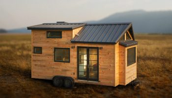 tiny house movement. how did the tiny house movement get started r