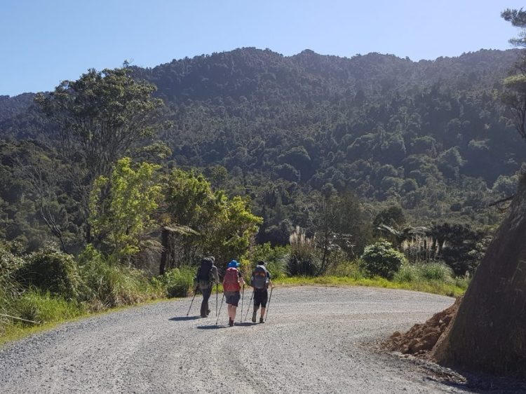 Pleasant road walking Te Araroa Trail