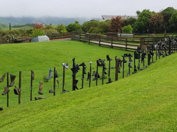 Te Araroa Shoe fence