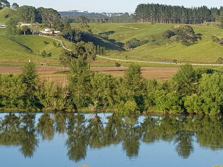 Te Araroa Trail Mercer to Rangiriri