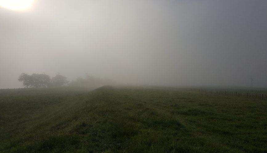 Te Araroa Trail - Day 33 Rangiriri