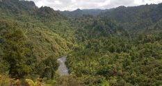 Te Araroa Trail 42 Traverse