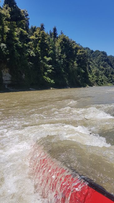 Te Araroa Trail Day 52 - Not a great day on the Whanganui river