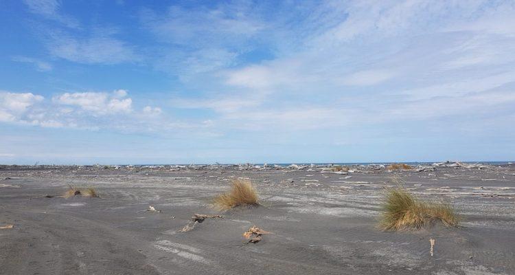 Te Araroa Trail Turakina Beach
