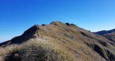 Te Araroa Trail Day 63 - Te Matawai to Nichols hut