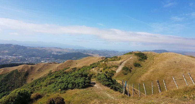 Te Araroa Trail Colonial Knob