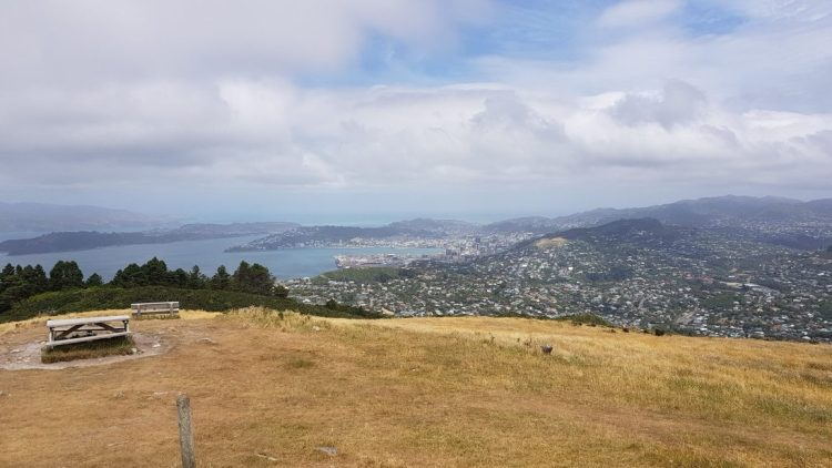 Te Araroa Trail Mount Kaukau outside Wellington