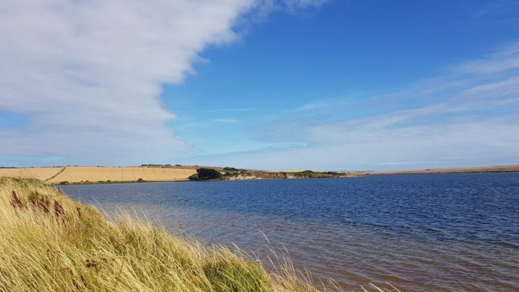 Fleet nature reserve near Sea Barn Farm