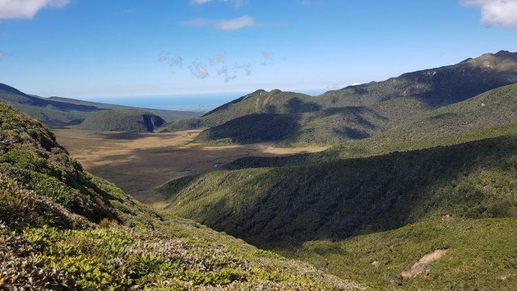 Ahukawakawa swamp Pouakai ranges