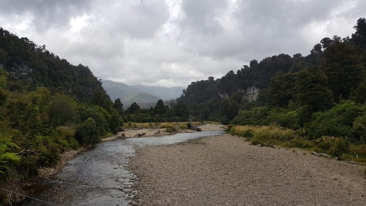 The cloud starts to lift - Heaphy Track