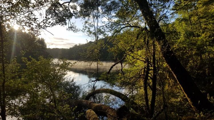 Beside the Waiau river Kepler track