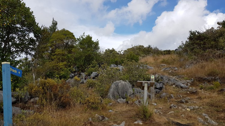 The Takaka Hill Walkway is well signposted