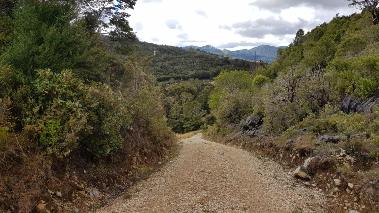 Starting the Takaka Hill Walkway