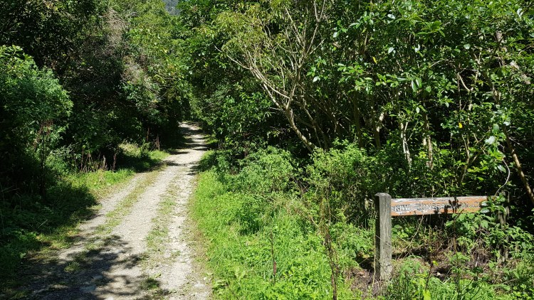 Gravel track towards the Involution track