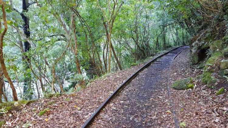 The railway winding it's way along the valley Charming Creek Walkway