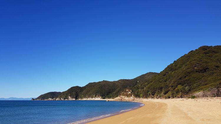 Mutton Cove Abel TasmanNational Park