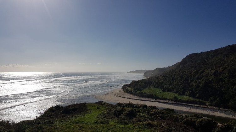 Looking back up the coast to the Anatori River