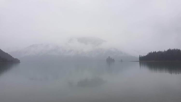 Misty Nydia Bay
