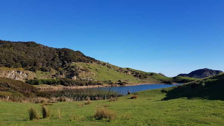 Dune Lake on the Puponga Farm Track