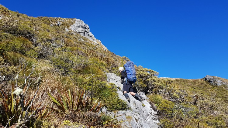 Scrambling on the Gordons Pyramid Route