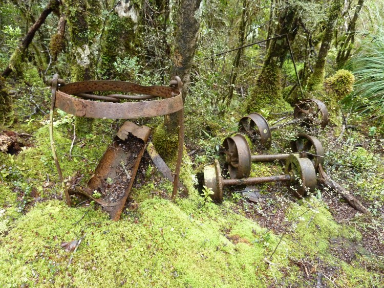 Old mining relics along the Big River Track