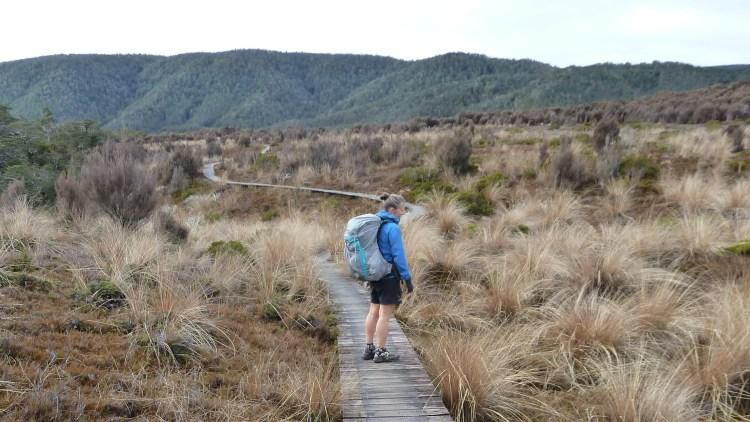 Love a nice boardwalk - heading towards Big River hut