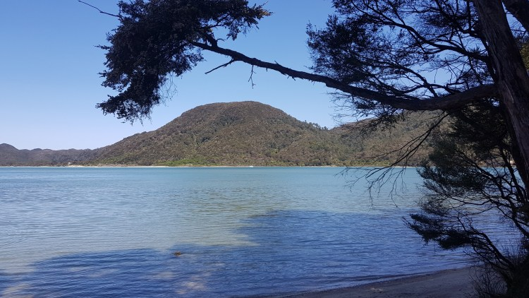 Awaroa Inlet at mid tide