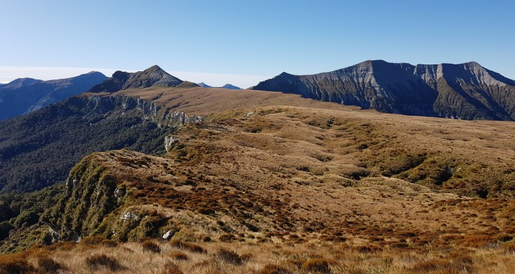 From Mt Misery overlooking 100 Acre Plateau, the Needle and the Haystack tinytramper