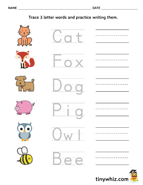 Free Printable Trace And Write 3 Letter Words on Kindergarten Spelling Words