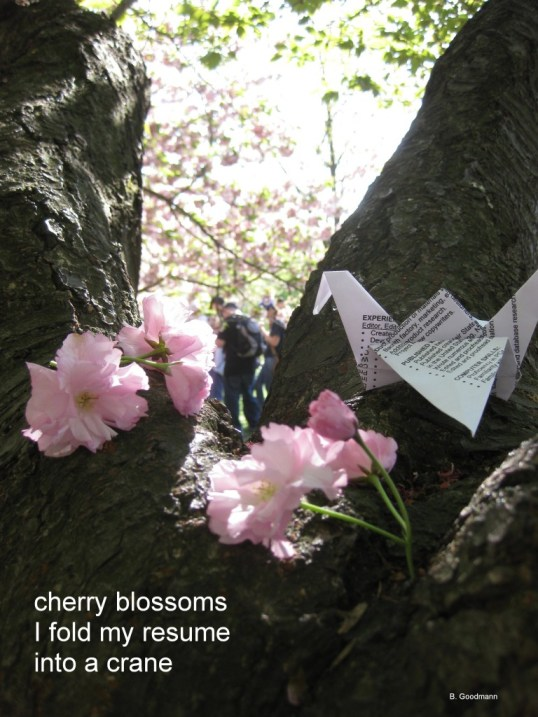 photograph of cherry blossoms with a paper crane