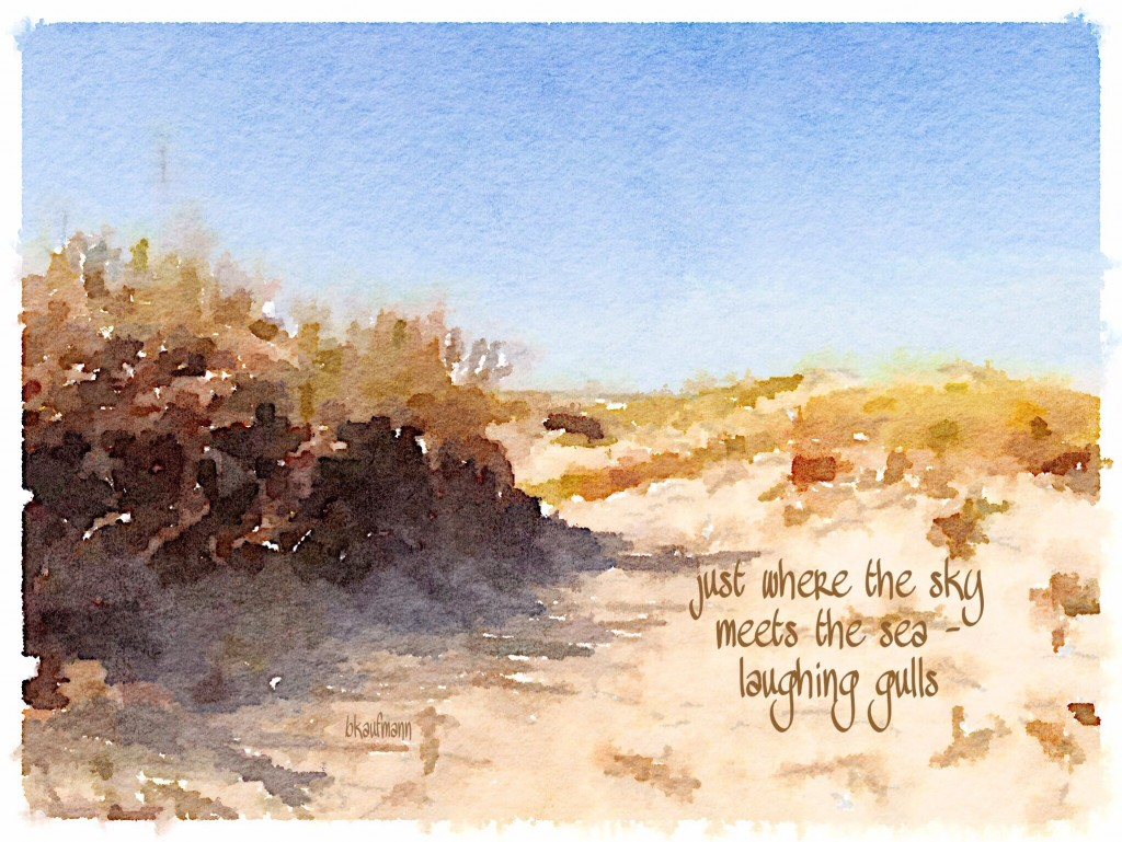 haiga: just where the sky / meets the sea -- / laughing gulls
