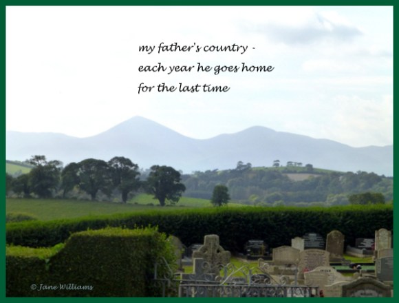 Haiga showing an old cemetery with a view of trees and hills in the background
