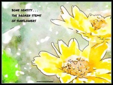 bone density haiga by Debbie Strange
