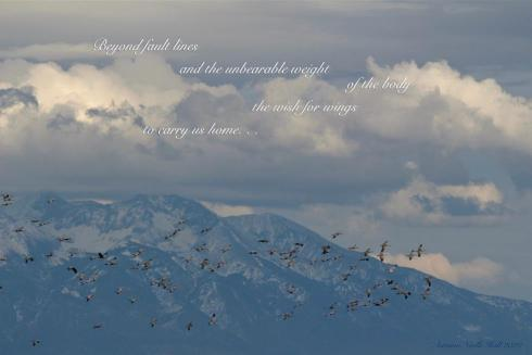 """photograph of clouds, mountain, and a flock of birds, with the text of the tanka superimposed on the clouds: """"Beyond fault lines ..."""""""