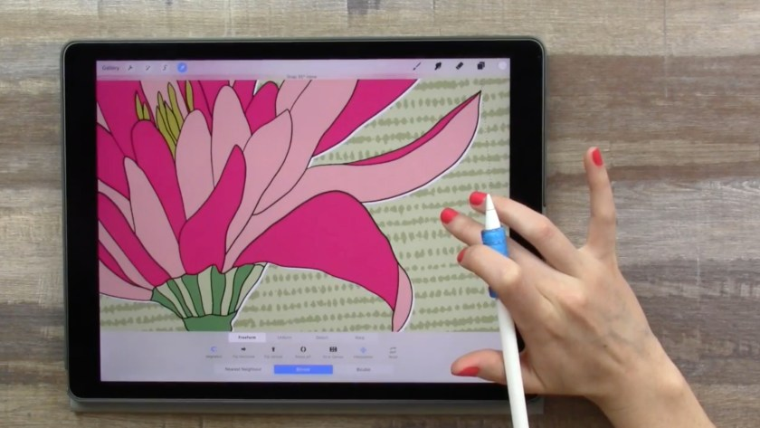 Botanical illustrations on ipad with procreate