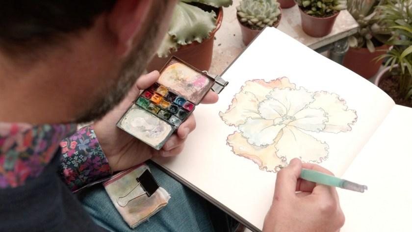 Botanical illustration sketchbooking course
