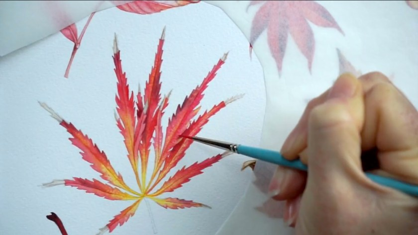 Paint realistic watercolor and botanical illustrations