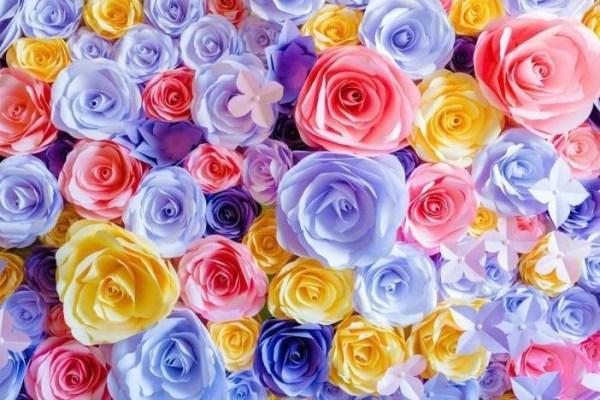 Скачать картинки цветов бесплатно в хорошем качестве ...