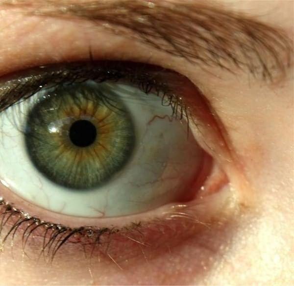Фото зеленый цвет глаз у женщин