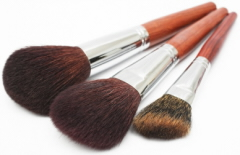 Picture of Makeup Brushes - Tipnut.com