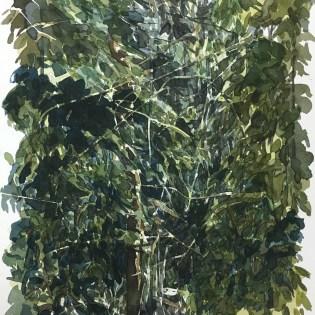 Artist: Zahari HamidonTitle: Ulu Belalong Year: 2014 Medium: Watercolor on paper Price: Size: