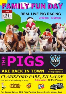 Pig Racing is back in Killaloe at Lough Derg FC Family Fun Day