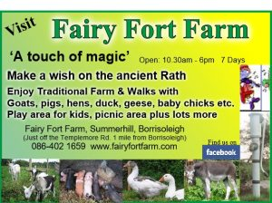 Fairy Fort Farm Borrisoleigh