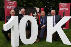 Co. Tipperary Farmers Prepare To Do Battle In The 2016 Diageo Baileys Champion Dairy Cow Competition