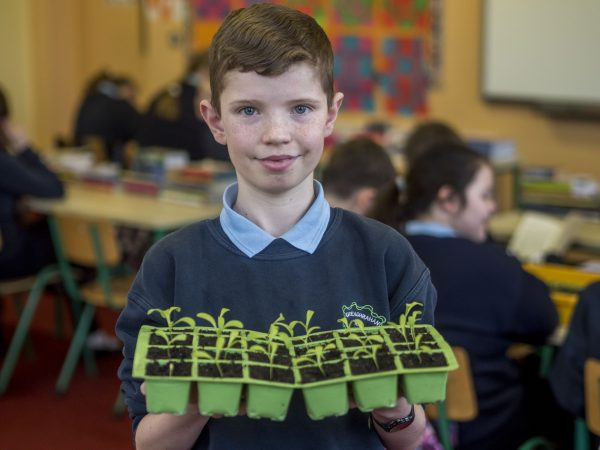 Liam Deegan, a pupil at Greaghrahan National School, Co. Cavan pictured with work in progress on their Hanging Baskets - the result of a project undertaken by their  class in the Junior Entrepreneur Programme, supported by  Cavan by ATA Group and its CEO Peter Cosgrave. Many of Ireland's leading entrepreneurs are calling on primary schools to sign up at www.juniorentrepreneur.ie to foster a culture of entrepreneurship in our young people for Ireland's future economic success. Pic. Jerry Kennelly