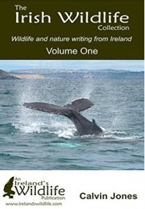 Irish wildlife collection Calvin Jones