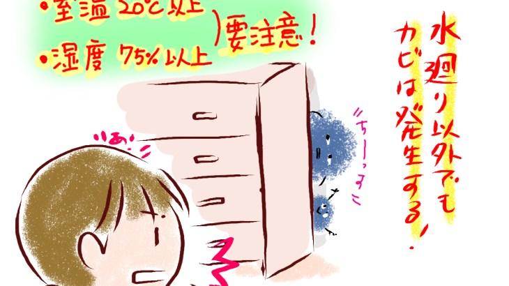 カビの掃除には注意が必要。壁に発生したカビを安全に掃除する方法