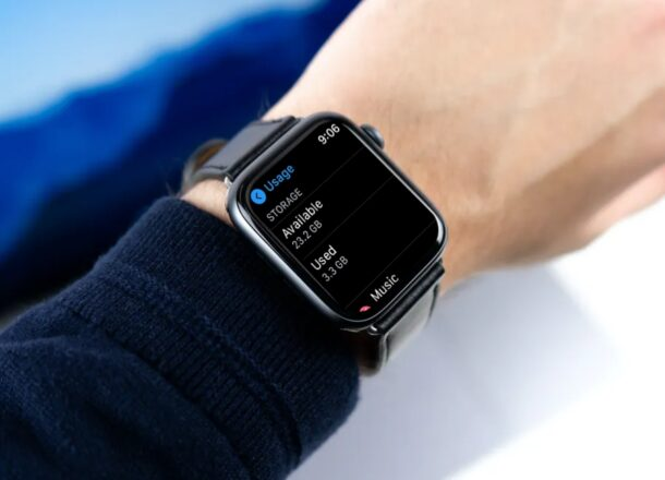 How to Check Apple Watch Storage Space