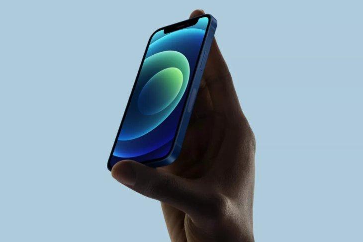 Apple Hentikan Produksi iPhone 12 mini