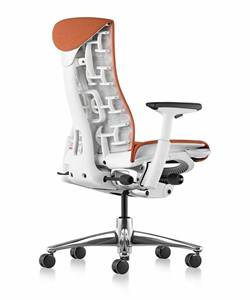 Description: herman-miller-embody-chair